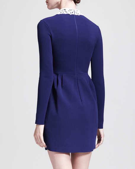 Long-Sleeve Dress with Detachable Leather Collar