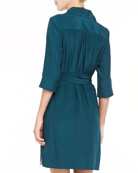 Collared Self-Belt Dress