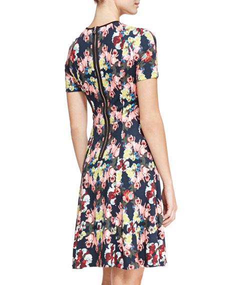 Armel Paneled Printed Dress