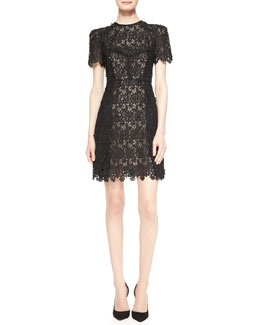 Erdem Aubrey Short-Sleeve Lace Mini Dress