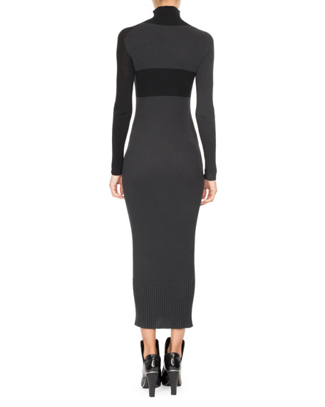 Ribbed Colorblock Turtleneck Sweaterdress