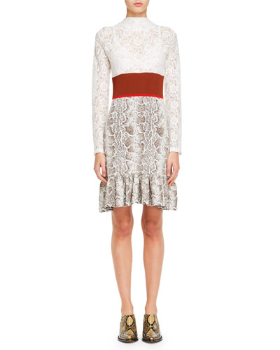 Python Jacquard Knit and Lace Long-Sleeve Dress
