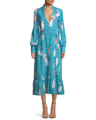V-Neck Long-Sleeve Button-Front Bird-Print A-Line Long Dress