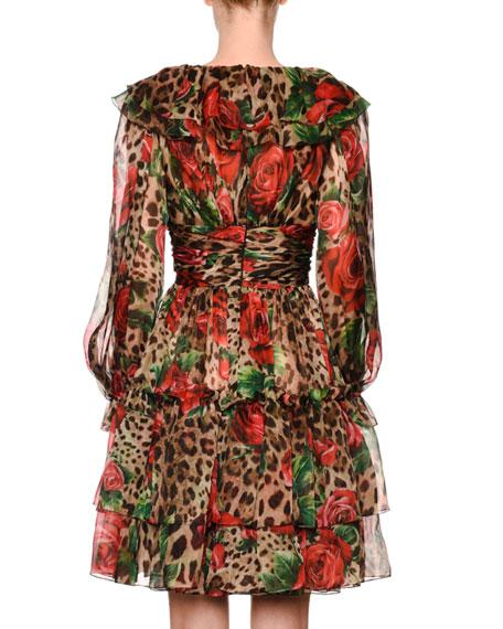 Long-Sleeve Rose & Leopard Print Organza Fit & Flare Dress