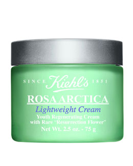 Rosa Arctica Lightweight Cream, 2.5 oz.