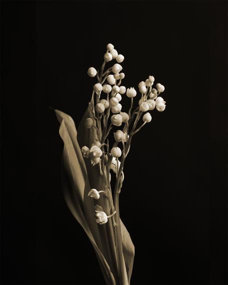 Virgin Lily of the Valley Eau de Parfum, 100 mL