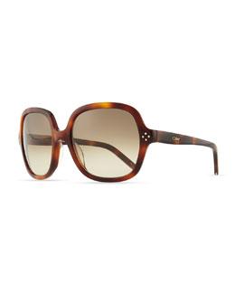 Chloe Boxwood Square Sunglasses, Havana