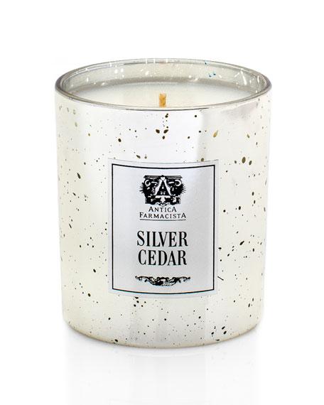 Silver Cedar Candle, 9.0 oz./ 255 g