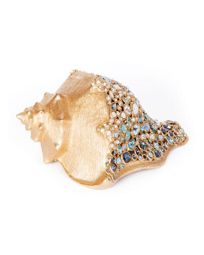 Oceana Conch Shell