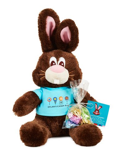 Chocolate The Bunny with Candy