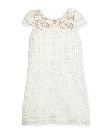 Cap-Sleeve Venetian Lace Shift Dress, White, Size 7-16
