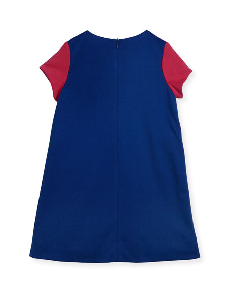 Colorblock Ponte Dress w/ Flowers, Size 2-6X