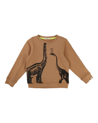 Hey Dude Dino Sweatshirt, Size 4-8