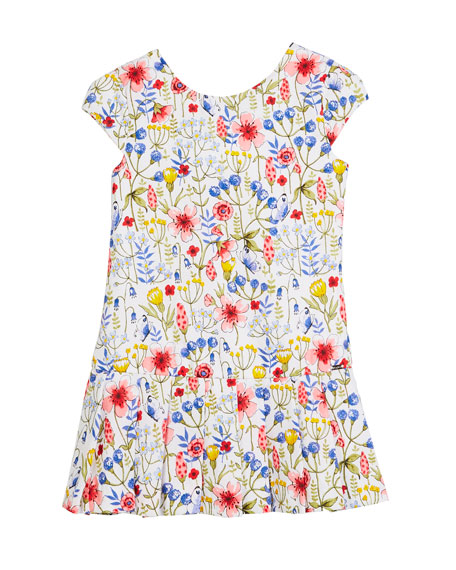 Floral Drop-Waist Dress, Size 12-36 Months