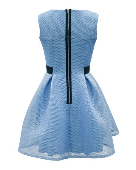 Lattice Mesh Sleeveless Dress, Size 8-16