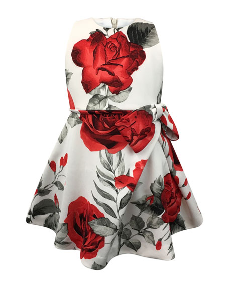 Image 1 of 1: Rose-Print Bow Dress, Size 7-14