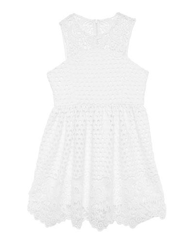 Perry Lace Sleeveless Dress  Size 8-16