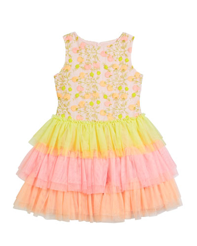 Girl's Multicolor Floral Lace Embroidered Tiered Tulle Dress, Size 4-5