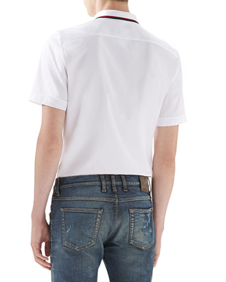 Cotton-Jersey Polo T-Shirt, White