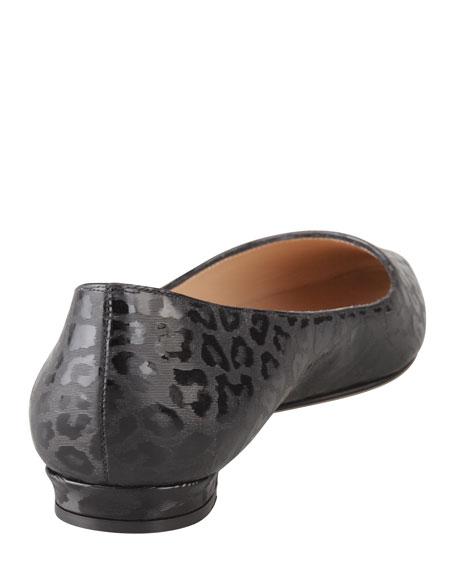 Titto Leopard-Print Pointy-Toe Flat