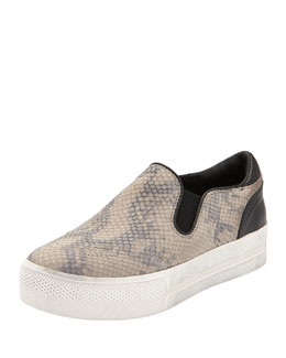 Jungle Snake-Print Skate Shoe