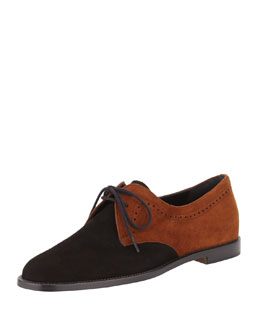 Manolo Blahnik Piola Bicolor Suede Oxford, Black/Brown