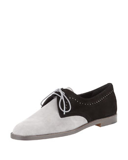 Manolo Blahnik Piola Bicolor Suede Oxford, Black/Gray