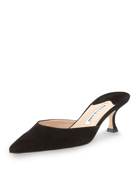 Manolo Blahnik Suede Pointed-Toe Mules view cheap price amazon cheap price outlet store sale online sale find great buy cheap the cheapest FNgWC