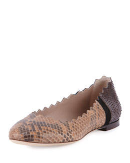 Lauren Scalloped Python Ballet Flat, Black/Brown
