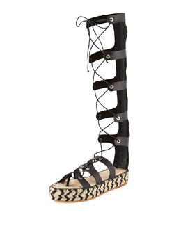 Sacha Knee-High Gladiator Sandal, Black