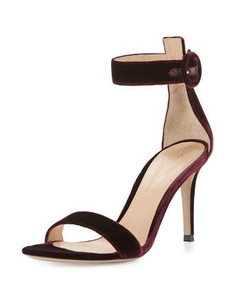 The Velvet Shoe