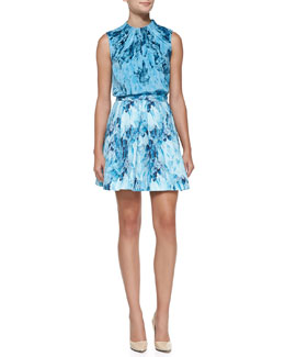 Elle Sasson Seren Gathered-Neck Printed Blouse & Lucine Printed Pleated A-Line Skirt