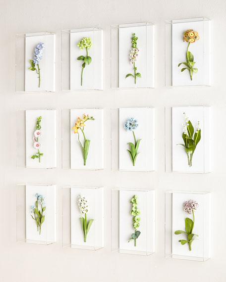 Original Painted Primula Study