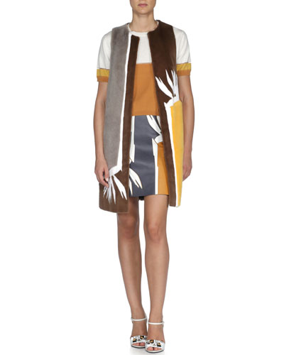 Colorblock Mink Bird of Paradise Vest, Sheer-Seamed Knit Colorblock Crop Top & Bird of Paradise-Print Leather Skirt