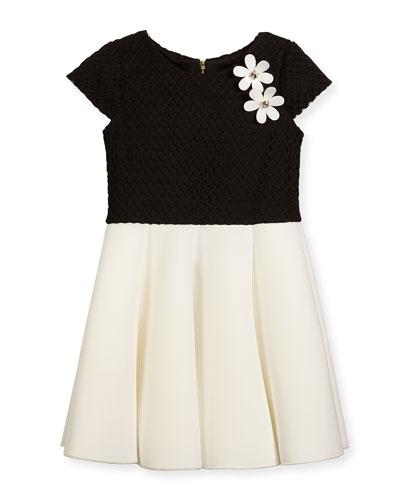 D g summer dresses 6x