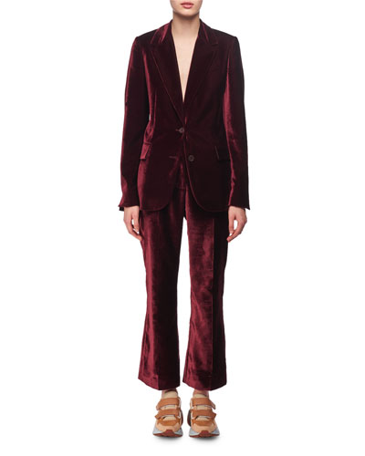 Velvet Two-Button Blazer and Matching Items