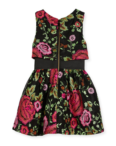 Valentine Elastic-Waist Rose-Print Dress, Size 4-6X