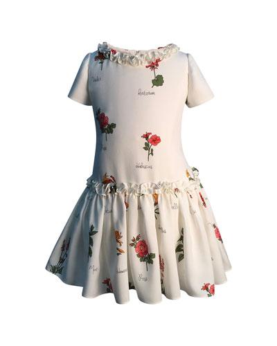 Botanical Print Ruffle Dress  Size 2-6  and Matching Items