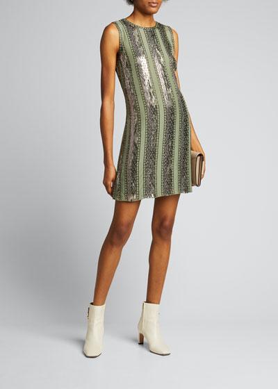 Esmarella Sequin Stripe Mini Dress