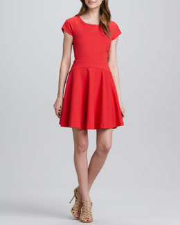 Diane von Furstenberg Delyse Full-Skirt Dress