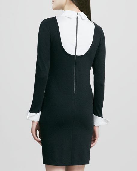 Courtnee Collar Dress