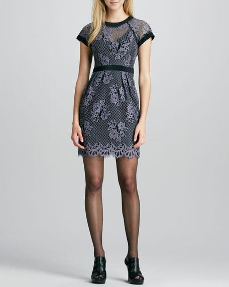 Hidden Gem Mesh/Lace Dress, Pebble/Black