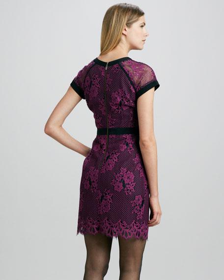 Hidden Gem Mesh/Lace Dress, Orchid/Black