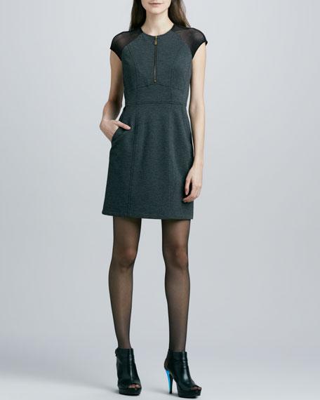Tahmira Mesh-Sleeve Ponte Dress