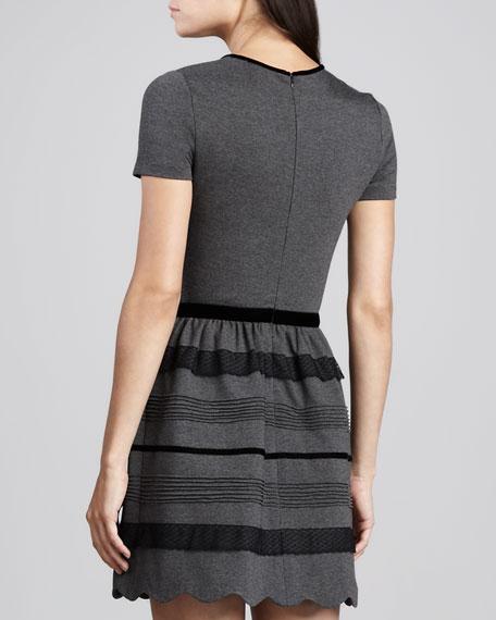 Velvet-Trim Short-Sleeve Knit Dress, Gray