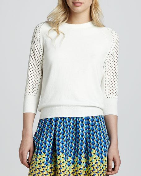 Cienaga Needlepunch-Sleeve Sweater