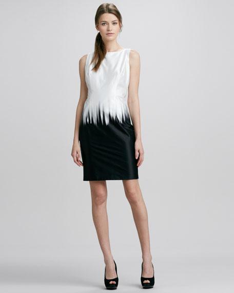 Eloise Warp Bicolor Sheath Dress