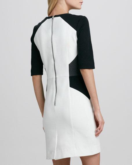Colorblocked Half-Sleeve Sheath Dress