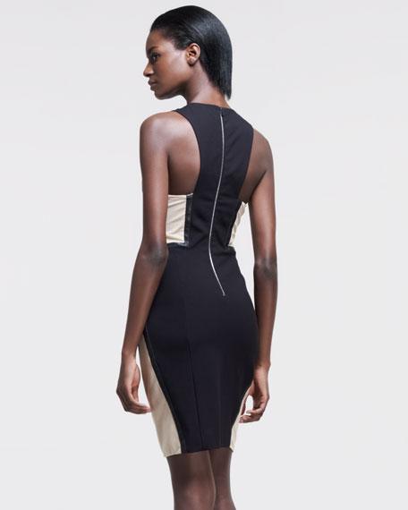 Piper Two-Tone Dress