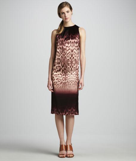 Clara Ombre Leopard-Print Dress